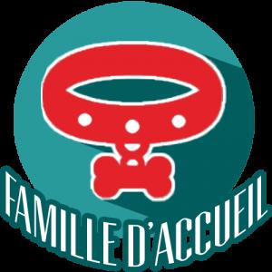Icône avec un collier - contacts pour devenir famille d'accueil